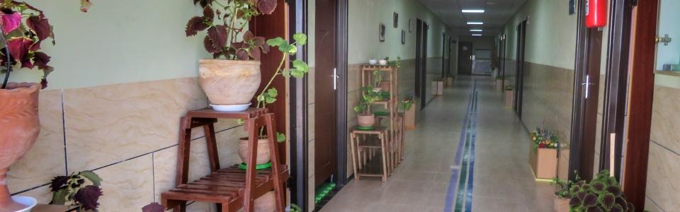مرکز غیرانتفایی روزانه آموزشی و توانبخشی امام علی (ع)
